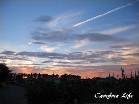 carefee-1.jpg
