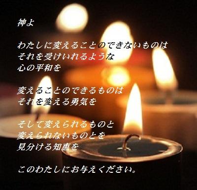 2011-12kokoro.jpg